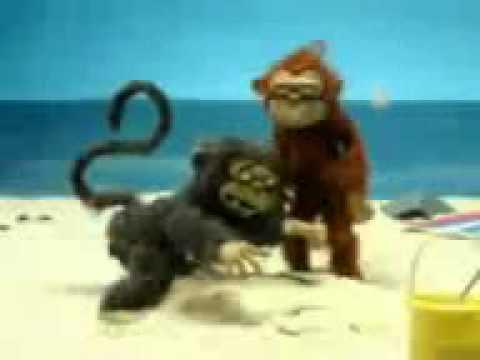 Monyet Sange