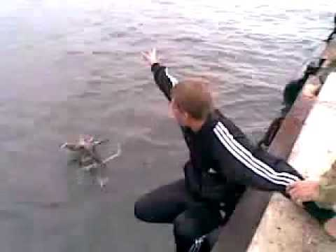рыбалка щука затопила лодку шок