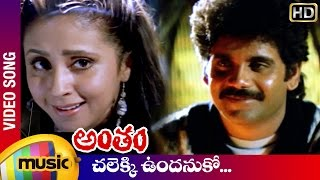 Antham Telugu Movie Songs | Chalekki Undanuko Video Song | Nagarjuna | Urmila | RGV | Mango Music - MANGOMUSIC