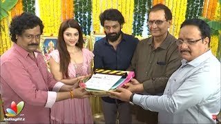 Kalyan Ram - Satish Vegesna Movie #NKR17 Launch || Mehreen Kaur || Gopi Sundar || Aditya Music - IGTELUGU