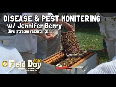Disease & Pest Monitoring w/ Jennifer Berry