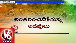 Warangal forests getting endangered with department negligence - V6NEWSTELUGU