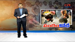 పందెం కోఢీ : All Arrangements Sets  for Sankranthi kodi Pandalu in Godavari districts | CVR News - CVRNEWSOFFICIAL