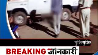 Chhattisgarh: Police officer deliberately hits the cow with car - ZEENEWS