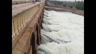 Watch: Crest gates of Mysuru's KRS dam opened to release excess water - TIMESOFINDIACHANNEL
