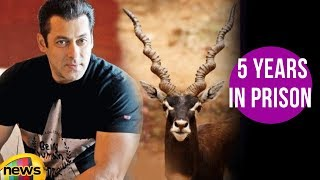 Salman Khan Sentenced To 5 Years In Prison Over Blackbuck Poaching Case | Mango News - MANGONEWS