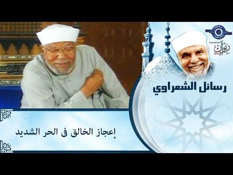 الشيخ الشعراوي | اعجاز الخالق فى الحر الشديد