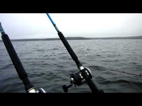 лицензия на рыбалку на онежском озере
