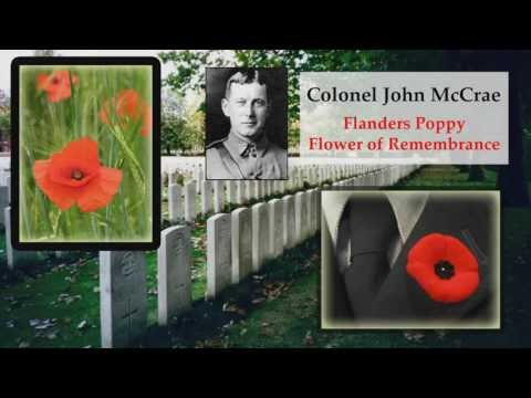 Remembrance: The Memorial Day Poppy