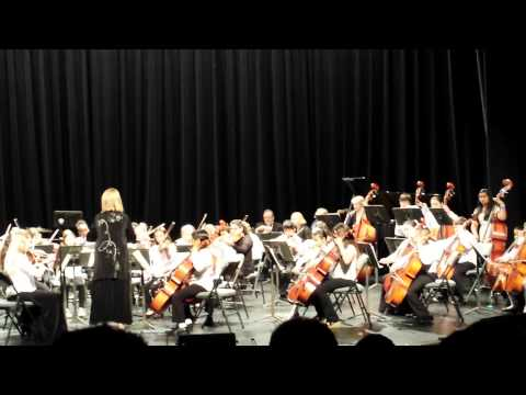 All County Youth Orchestra 2014