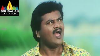Mr.Errababu Movie Comedy Scenes Back to Back | Sivaji | Sunil | Roma | Sri Balaji Video - SRIBALAJIMOVIES