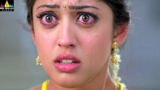 Baava Movie Siddharth & Pranitha Marriage Scene | Latest Telugu Scenes | Sri Balaji Video - SRIBALAJIMOVIES