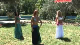 Восточные танцы - урок № 21 Bellydance