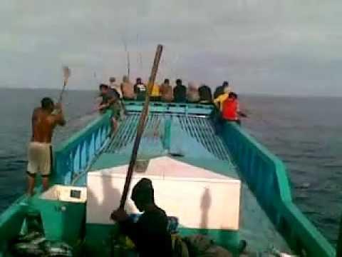 Memancing ikan cangkalang di perairan Flores