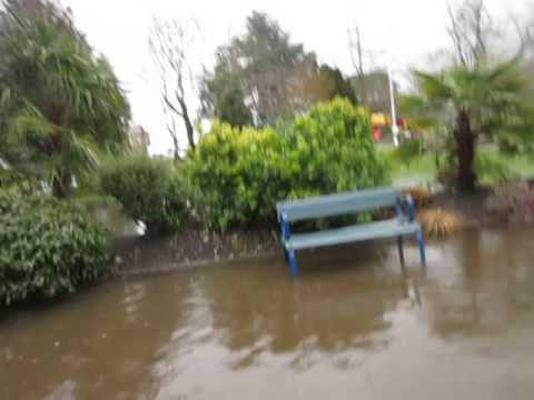Flooded Park on Salt Spring Island
