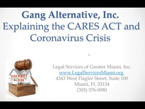 GA's webinar on Tenants Rights during COVID-19, facilitated by Legal Services of Greater Miami