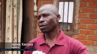 Malawi Farmers Turn to Traditional Methods Against Fall Armyworm - VOAVIDEO