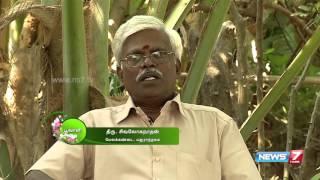 Poovali 19-04-2016 'Aamanakku' helps to heal intestinal wounds – NEWS 7 TAMIL Show