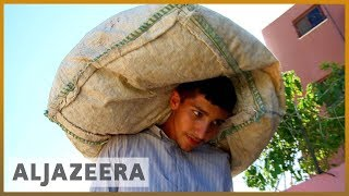 🇵🇸 Palestine: Unregulated tobacco industry on the rise | Al Jazeera English - ALJAZEERAENGLISH