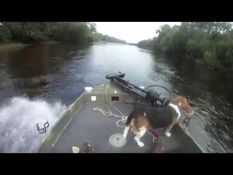 Shallow River Fishing Beagle on RoughNeck Stick Steer Jet Jon Boat, UHMW