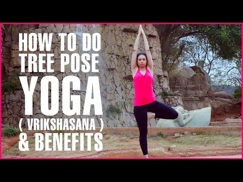How To Do Tree Pose Yoga ( Vrikshasana ) & Its Benefits