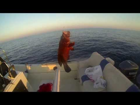 صيد شنينو بحداق سناره - Fishing With GoPro Hero 3 Black Edition Cam