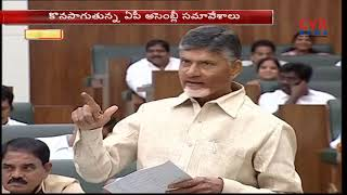 AP CM Chandrababu Naidu Speech in Assembly About Chandranna Pelli Kanuka | CVR NEWS - CVRNEWSOFFICIAL