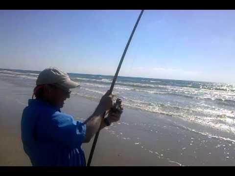 Shark fishing texas surf vidoemo emotional video unity for Galveston fishing pier cam