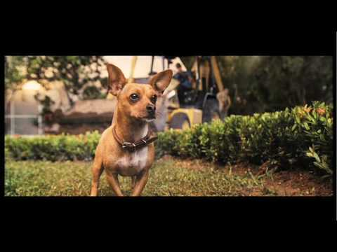Beverly Hills Chihuahua Full Trailer