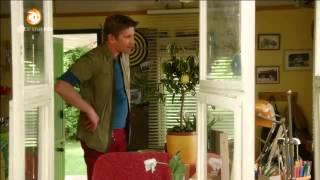 308 Pflanzen - Die giftgrüne Wunderalge