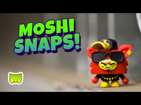 Snappy Chappy - Interview with Moshi Photographer!