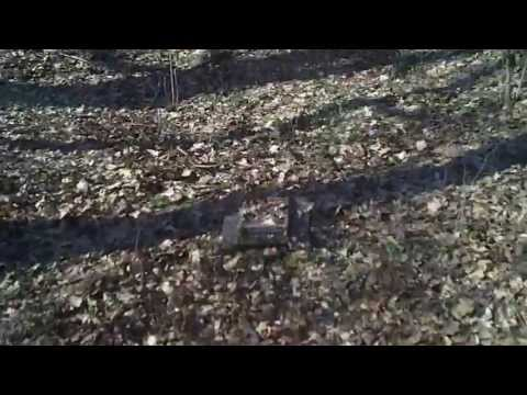 #30 Homemade RC tracked vehicle ( UGV ) - On the spring leaf litter - J.Laci