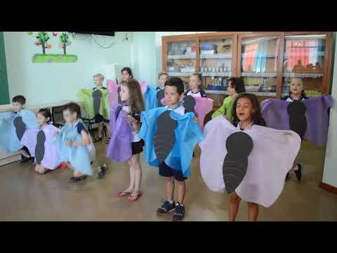Pré II B - As borboletas