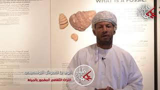الفاضل/ أيوب بن نغموش البوسعيدي في دقيقة عمانية يتحدث عن