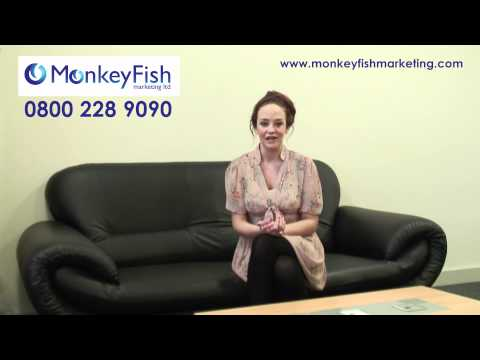 Blog Marketing Company and MonkeyFish