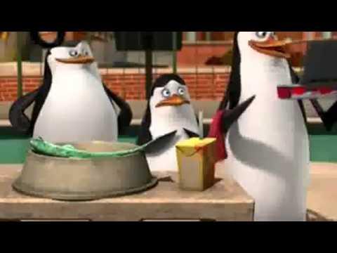 Włochaty problem | Pingwiny z Madagaskaru [PL] cały odcinek!