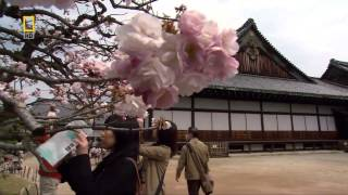 Потаённые секреты Японии