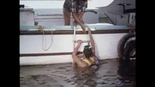 51 Flipper in Lebensgefahr
