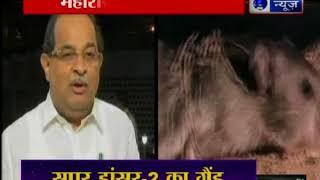महाराष्ट्र में चूहा घोटाला जिसने महाराष्ट्र की राजनीति में हंगामा मचा दिया - ITVNEWSINDIA