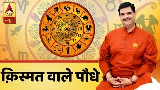 Know which plants can bring luck & prosperity for you | Guruji With Pawan Sinha - ABPNEWSTV