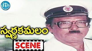 Swarna Kamalam Movie Scenes - Potti Prasad Comedy Scene || Ilayaraja - IDREAMMOVIES
