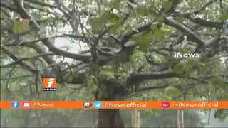 Cyclone Storm DAYE Crosess At Gopalpur Coast Area In Odisha | To Heavy Rainfall In AP&TS | iNews - INEWS