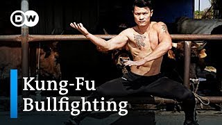 Kung-Fu bullfighting in China | DW Feature - DEUTSCHEWELLEENGLISH