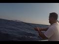 Pescando en los barcos hundidos