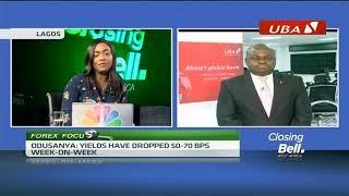 All eyes on Nigeria's primary market auction - ABNDIGITAL