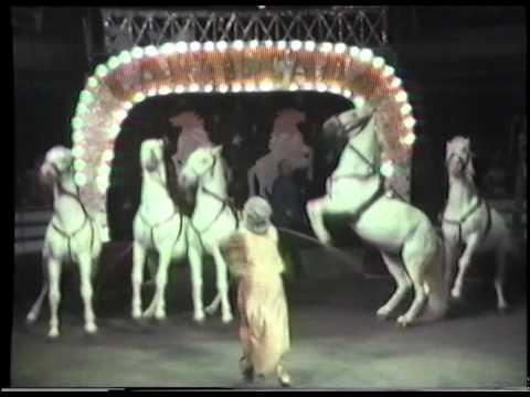 Circul Globus - 50 de ani de spectacol.