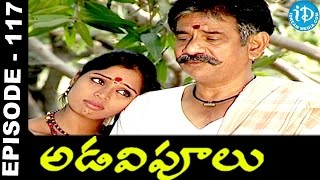 Adavipoolu || Episode 117 || Telugu Daily Serial - IDREAMMOVIES