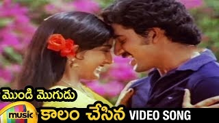 Kalam Chesina Telugu Song | Mondi Mogudu Telugu Movie Video Songs | Suman | Ambika | Ilayaraja - MANGOMUSIC