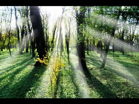 Photoshop CS6: Sun Rays Effect
