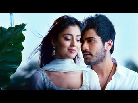 Nuvva Nena movie Songs - Neeli Neeli Kannule - Allari Naresh Sriya Sarvanand